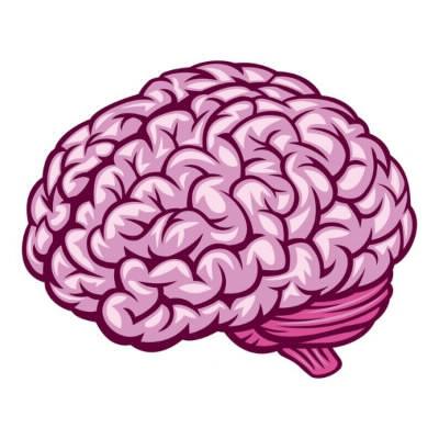 Quelle est la fille au gros cerveau ?
