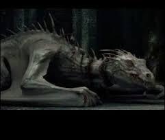 Quelle est l'espèce du dragon qui surveille l'entrée de certains coffres ?