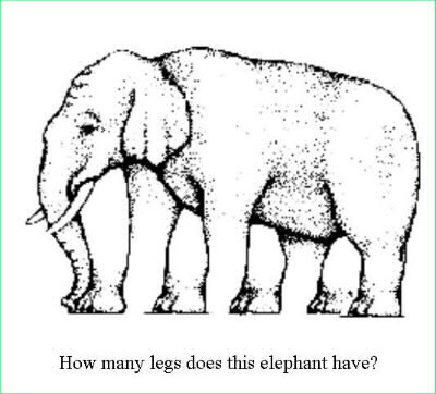 Combien cet éléphant a-t-il de pattes ?