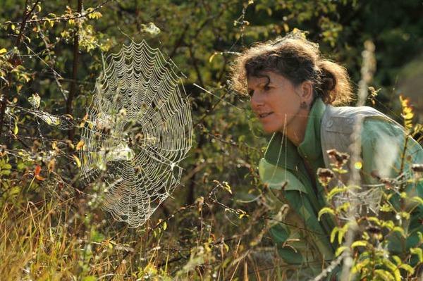 Qu'étudie un arachnologue?