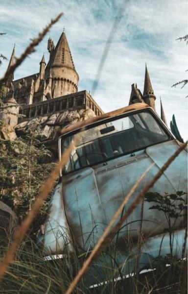 Aká by bola tvoja reakcia, keby ti Hagrid oznámil, že si čarodej/čarodejka?