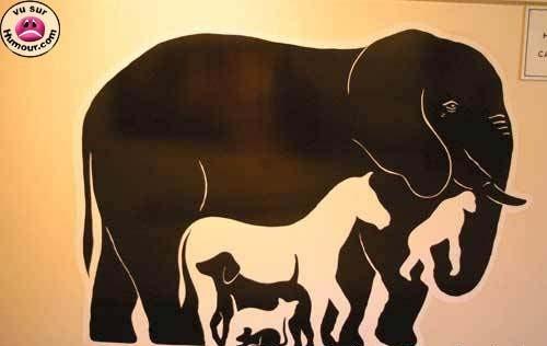 Combien d'animaux vois-tu ?