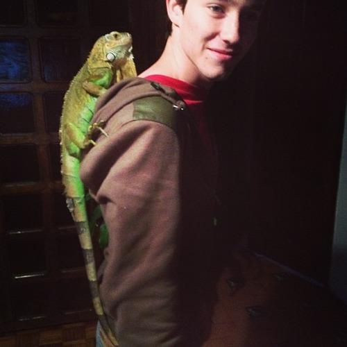 Como se llama la iguana de Alonso ?