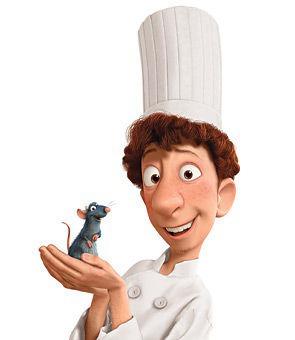 Quelle profession pratique le garçon dans Ratatouille ?
