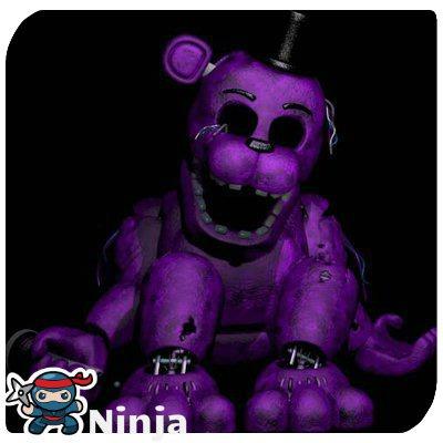 Qui est Shadow Freddy's ?