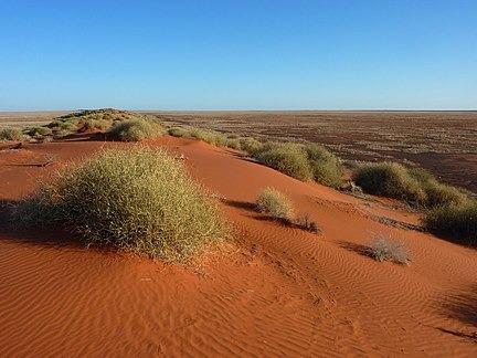 Čo je Simpsonová púšť ?