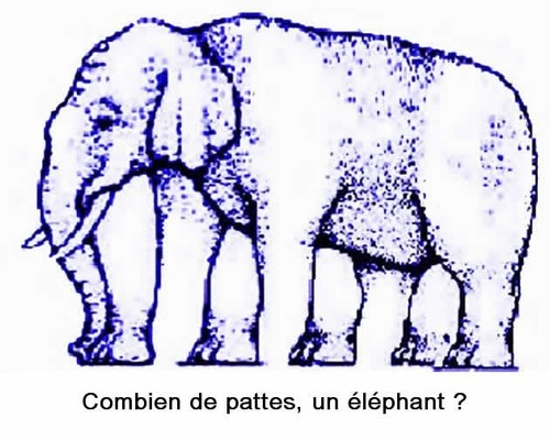 Combien de pattes a cet éléphant ?