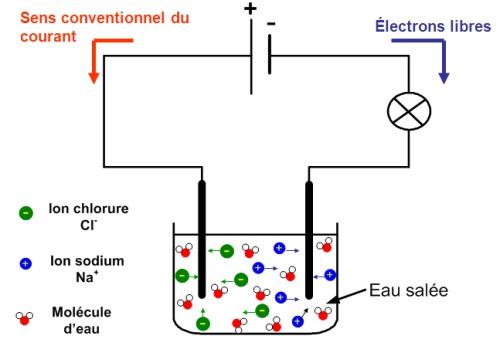 La circulation électrique dans un liquide est due au déplacement des ions ?