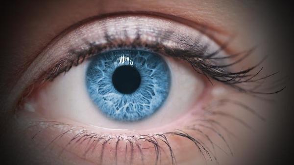 Quelle partie de l'œil donne sa couleur aux yeux ?