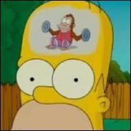 Pourquoi l'intelligence d'Homer n'est-elle pas toujours au rendez-vous ?