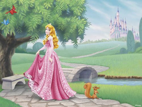 Quais as Músicas cantadas por Aurora no Bosque?