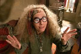 Quelle matière le professeur Trelawney enseigne-t-elle ?