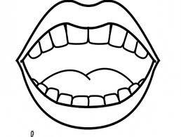 Quantos dentes tem aqui?