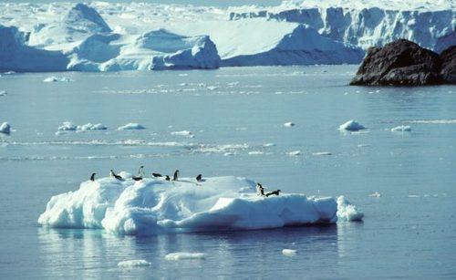 D'après certaines études scientifiques, l'air de l'Antarctique reste-t-il pur ?
