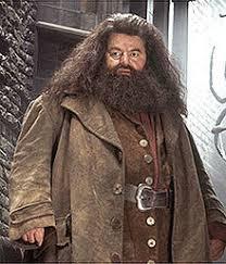 Qui vient chercher Harry chez les Dursley ?