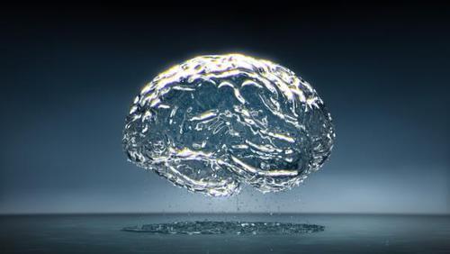 O cérebro humano é constituído por quantos porcentos de água ?