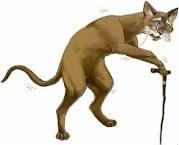 Race de chat les plus grand du monde