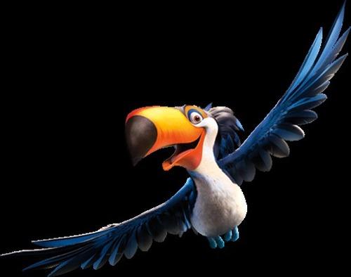 De quelle couleur et le bec de l'oiseau ?