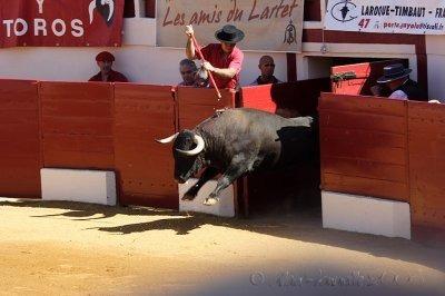 Dans quel lieu de l'arène tient-on les taureaux enfermés avant le combat ?