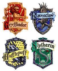 Quelle maison a choisi le choixpeau pour Harry ?