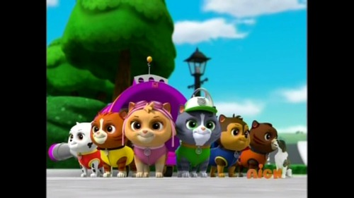 What Is The Name Of Humdingers Dog In Paw Patrol