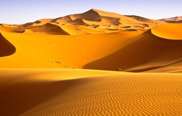 Quelle est la température moyenne du désert du Sahara en été ?