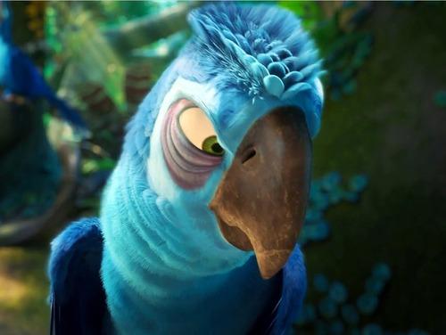 Est-ce que cet oiseau est un ennemi de Rio ?
