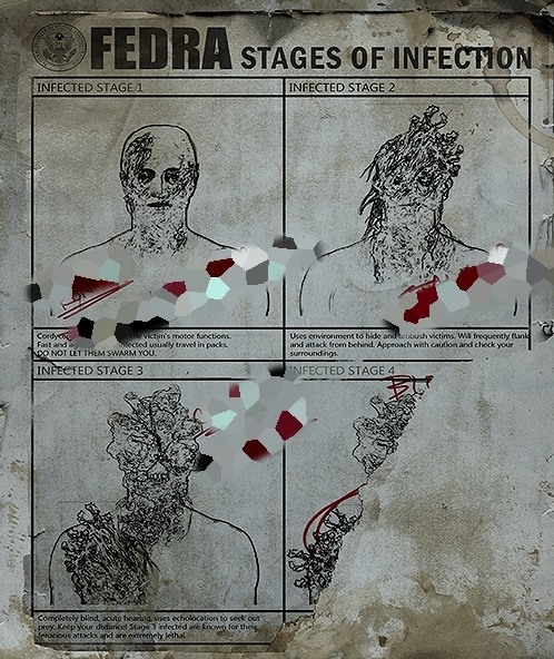 Classez les étapes de l'infection.