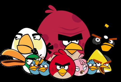 Sur l'image, combien y a-t-il d'oiseaux ?
