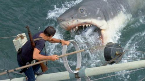 """De quel épisode est tiré cette image du film """" Les dents de la mer """" ?"""