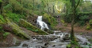 La plus vaste forêt de Bretagne est :