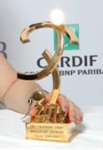 Qui a été élue meilleure buteuse du championnat 2011 ?