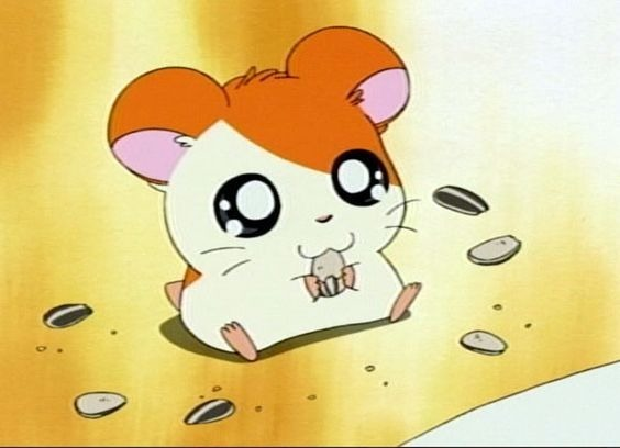 Quel petit animal est Hamtaro dans le manga créé par Ritsuko Kawai ?