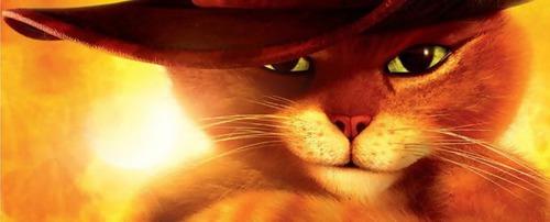 Qual o maior medo do Gato de Botas ?