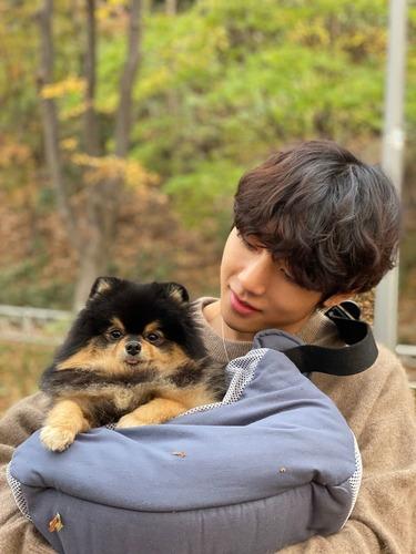 Comment se prénomme le chien de Taehyung ?
