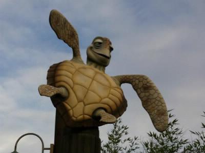 Comment s'appelle la tortue adulte dans Nemo ?