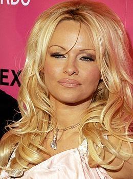Pour quel magazine Pamela Anderson est-elle la recordwoman des couvertures ?