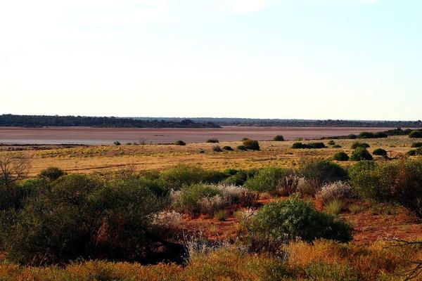 Aké teploty dosahuje Veľké Viktóriina púšť ?
