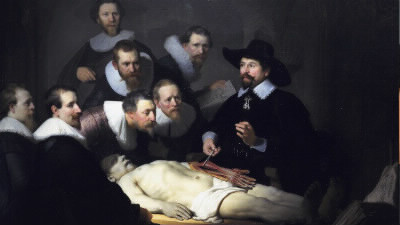 Quel organe du corps humain a été récemment découvert ?