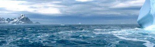 Quel pourcentage de nos émissions carboniques est absorbé par l'océan Austral ?