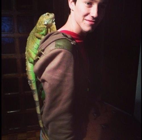 Como se llama la iguana de Alonso?