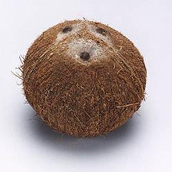 Qual esporte é usado uma bola semelhante a este fruto ?