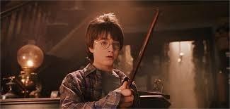 Comment s'appelle la boutique du chemin de traverse ou Harry Potter achète sa baguette ?