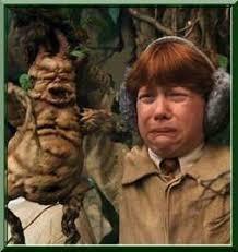 Dans le 5, quelle est cette plante que Neville a ?