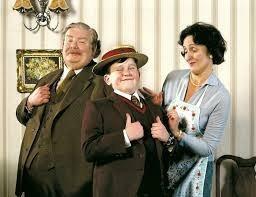 Comment s'appelle la famille chez qui Harry va vivre ?