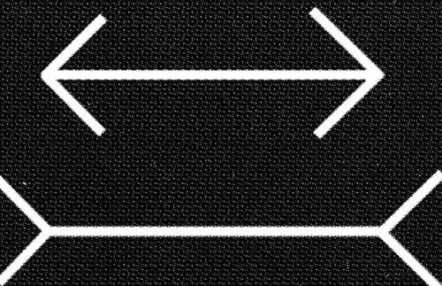 Les lignes sont-elles de la même taille ?