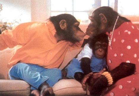 Dans une publicité, pour quel produit voit-on des singes parler un langage étrange ?