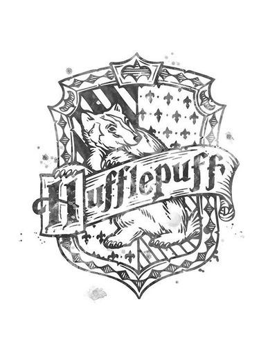 Quais são as cores da equipa Hufflepuff