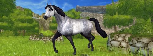 A játékban meik ez a lófajta ?