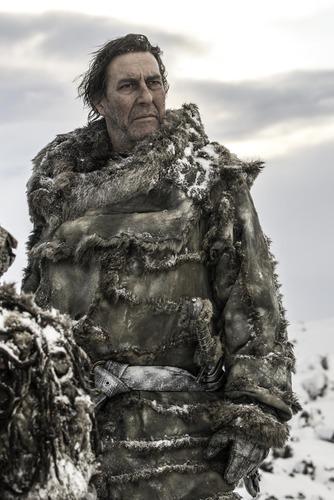 Avant d'être le Roi des sauvageons, Mance Rayder était .....
